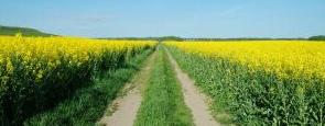 Udržitelné zemědělství a ochrana přírody našeho regionu.